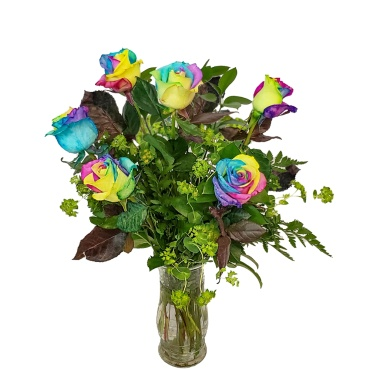 Rainbow Rose Half Dozen